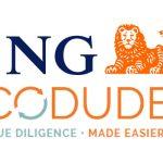 ING N.V. adopts CODUDE